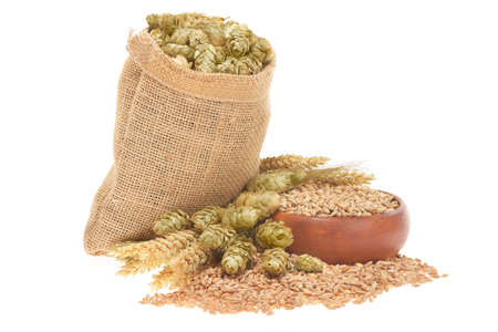 beer ingredients, hops, wheat, grain, barley and malt isolated on white