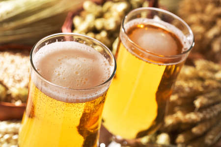 beerglass: Two beer glasses with hops, wheat, grain, barley and malt Stock Photo