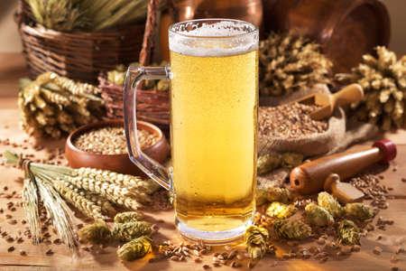 啤酒杯與啤酒花,小麥,穀物,大麥和麥芽 版權商用圖片