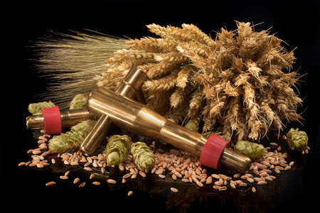 spigot: beer spigot with hops, wheat, grain, barley and malt isolated on black Stock Photo