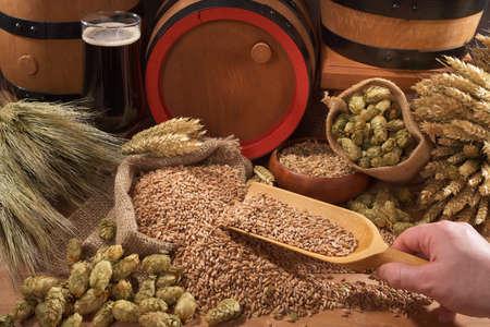 啤酒和一桶啤酒,啤酒花,小麥,穀物,大麥和麥芽 版權商用圖片