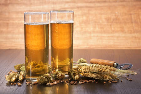 beerglass: Special German Cologne beer glasses with hops, wheat, grain, barley and malt Stock Photo