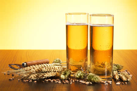 Special German Cologne beer glasses with hops, wheat, grain, barley and malt in yellow light