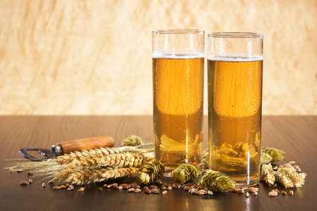 Special German Cologne beer glasses with hops, wheat, grain, barley and malt Stock Photo