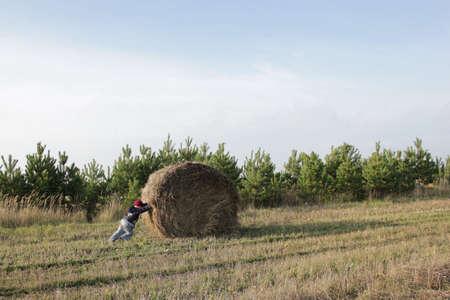niño empujando: chico empujando heno