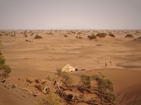 Sahara - April 15: A Berber camp in the sand dunes of the Sahara desert. Morocco, Apr 15, 2013.