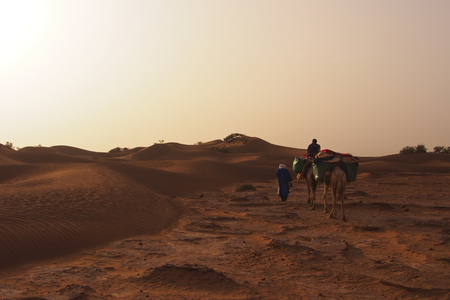 Sahara - April 15: Camel caravan going through the sand dunes in the Sahara desert. Morocco, Apr 15, 2013. Editorial