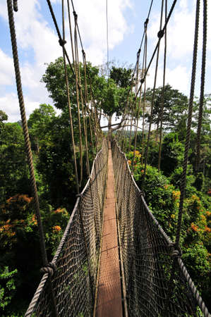 Kakum National Park is a 375 square km national park located in the Central Region of Ghana  Kakum National Park has a long series of hanging bridges at the forest canopy level known as the Canopy Walkway