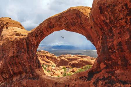 arcos de piedra: P�jaro que vuela a trav�s del Top O de Double O Arch en el Parque Nacional Arches, Utah. Foto de archivo