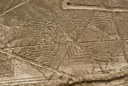 lines: Nazca Lines Spider as viewed from a plane, Nazca, Peru.