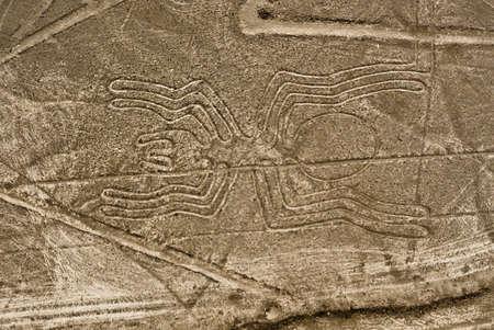 Nazca Lines Spider gezien vanuit een vliegtuig, Nazca, Peru. Stockfoto