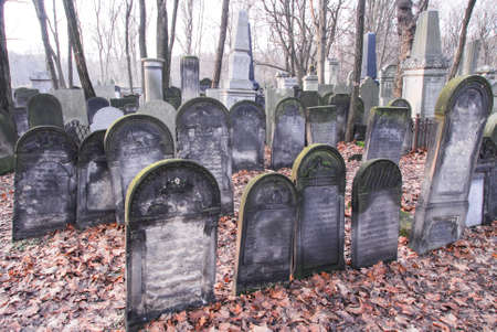 judaical: Old graves at historic Jewish cemetery, Okopowa Street in Warsaw, Poland