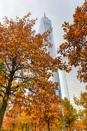 world trade center: Freedom Tower in autumn in Lower Manhattan. One World Trade Center is the tallest building in the Western Hemisphere and the third-tallest building in the world. Editorial