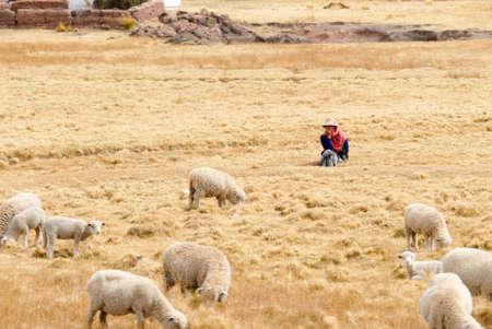 SACRED VALLEY OF THE INCAS, PERU - AUGUST 16, 2006: Shepherd managing her flock in Peru, South America in the Sacred Valley of the Incas.