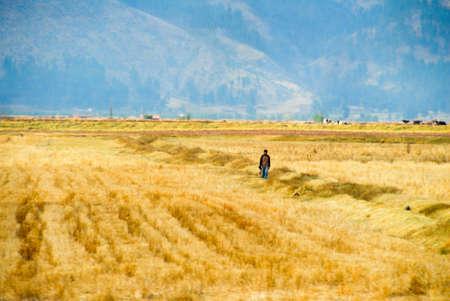incan: Fattoria lungo il sentiero Inca tra Cuzco e Macchu Picchu, in Per�.