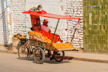 merchant: NAZCA, PERU - AUGUST 10, 2006: Street vendor selling mandarins and oranges in Nazca, Peru.