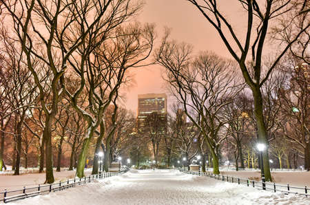 Central Park at night during the winter in New York City. Imagens