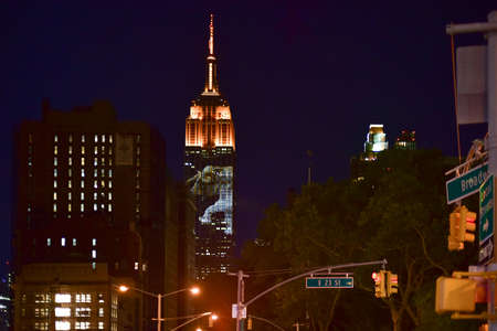 New York City - August 1, 2015: Endangered animals projected onto south side of the Empire State Building in New York City as part of the Racing Extinction project as seen from the Flatiron District.