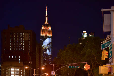 flatiron: New York City - August 1, 2015: Endangered animals projected onto south side of the Empire State Building in New York City as part of the Racing Extinction project as seen from the Flatiron District.