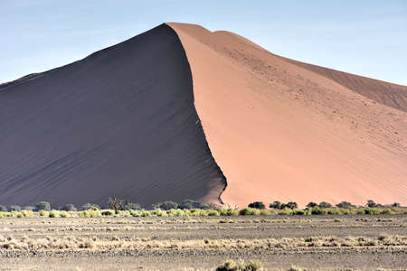 vlei: High red dunes, located in the Namib Desert, in the Namib-Naukluft National Park of Namibia.