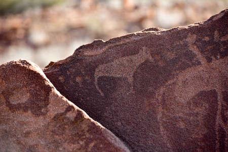 engravings: Bushman prehistoric rock engravings at the UNESCO World Heritage Center in Twyfelfontein, Namibia. Editorial