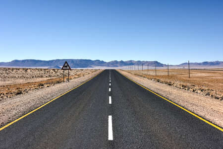 desert vegetation: Road along the desert landscape of Namibia.