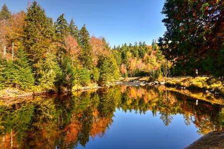 Adirondacks Peak Fall Foliage alongside Monument Falls, New York.