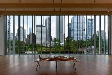 institute: Chicago - September 8, 2015: Skyline view of Chicago from the Art Institute of Chicago. Editorial