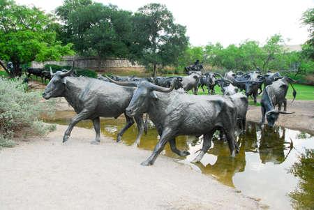 Dallas, Texas - 13 mai 2007: Pioneer Plaza, le bétail traversant un cours d'eau libre et ouvert au public, repère 73 bovins pièce d'entraînement sculpture offert par Trammel Crow, à la ville de Dallas Banque d'images - 48265931