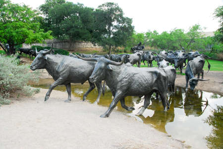 Dallas, Texas - May 13, 2007: Pioneer Plaza, cattle crossing a stream open and free to the public, landmark 73 piece cattle drive sculpture gifted by Trammel Crow to the city of Dallas Editorial
