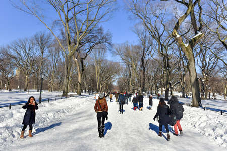 New York City - January 24, 2016: People exploring Central Park in New York City, following a major snowstorm in the winter.