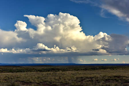 arizona landscape: Scenic Arizona landscape looking out from the Petrified Forest National Park.
