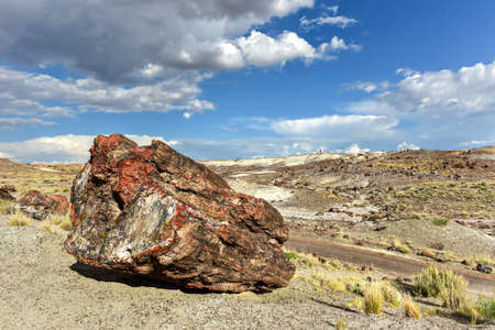 badland: The Crystal Forest in the Petrified Forest National Park in Arizona.