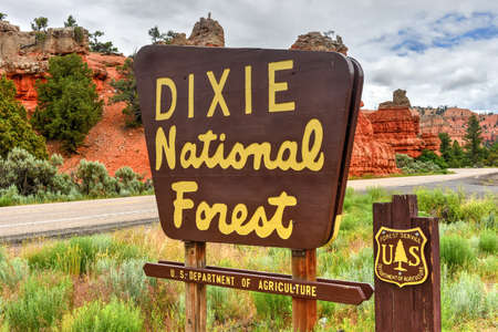Red Canyon at Dixie National Forest in Utah, United States. Stock Photo