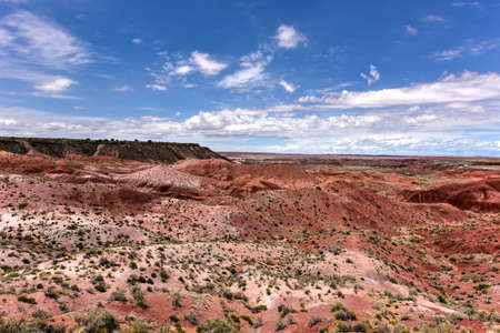 petrified: Tiponi Point in the Petrified Forest National Park in Arizona.