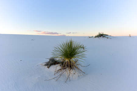 Sunset at White Sands National Monument in New Mexico.