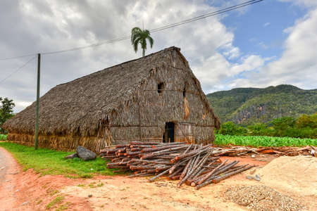 Tobacco drying room in the Vinales valley, north of Cuba. Stock Photo