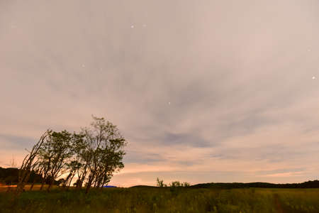 View of the starry night sky in Shenandoah National Park, Virginia Stock Photo