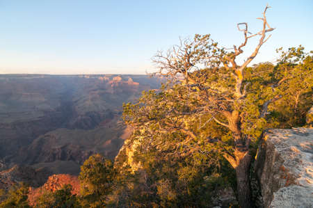 Grand Canyon National Park from the edge. Stock Photo