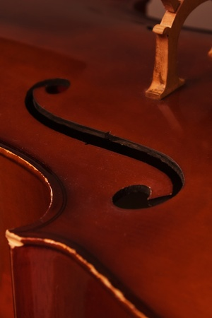 Close-up picture of the old cello on a gray background  photo
