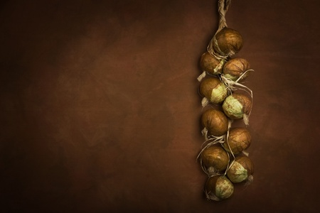 brown: Bunch of onions hanging on the wall