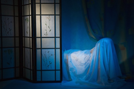 Refined boudoir interior in the blue colors Stock Photo - 9137743