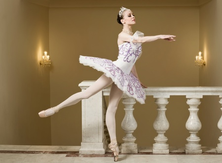 Portrait of the ballerina in ballet pose Stock Photo - 10014470