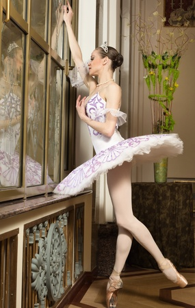 Portrait of the ballerina in rich interior Stock Photo - 10508614