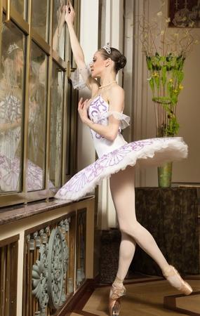 Portrait of the ballerina in rich interior Stock Photo - 10508614