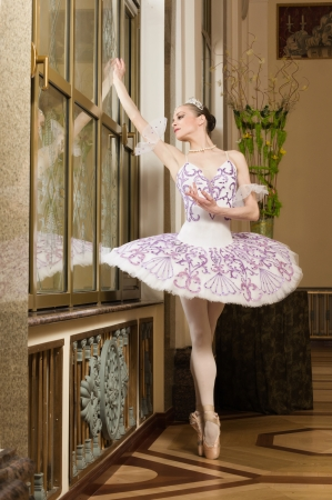 Portrait of the ballerina in ballet pose Stock Photo - 10508611