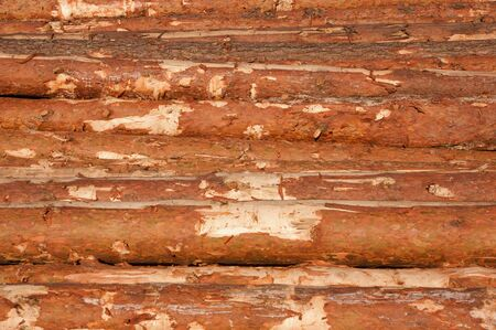 Background of the stack of fire wood Stock Photo - 11093776
