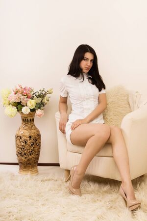 Portrait of the attractive brunette in a boudoir Stock Photo - 14430406