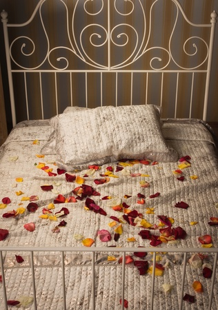 Old style bed in the elegant bedroom     photo