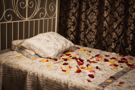 Old style bed in the elegant bedroom Stock Photo - 16884029